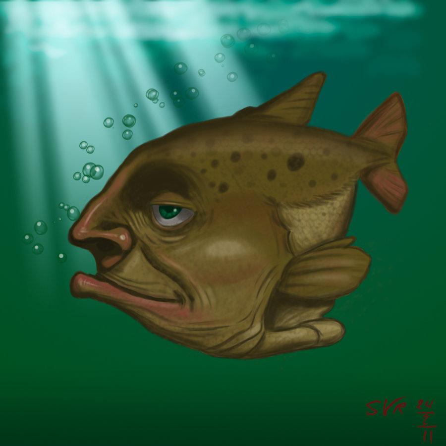 Weird Fish.jpg | Letter Art By Best Gift Idea Ever